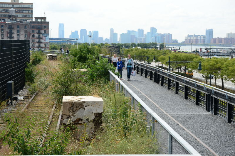 highline case study Case study highline 1 03 urban renewal case studies urban renewal of rail yards a case study of high line, new york context the highline is an urban renewal scheme for the unused railway trail going through the city of manhattan , new york.